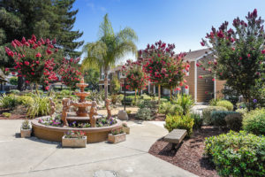 Town & Country Apartments - Beautiful walkway