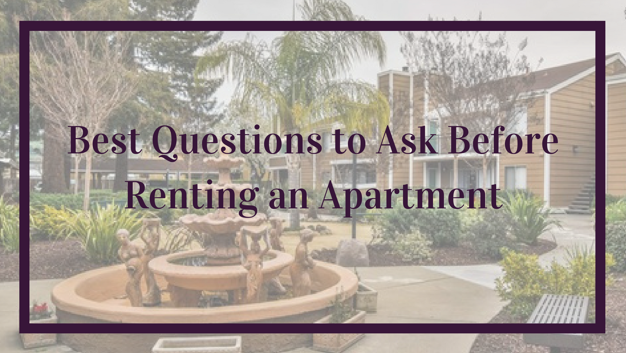 Best Questions to Ask Before Renting an Apartment