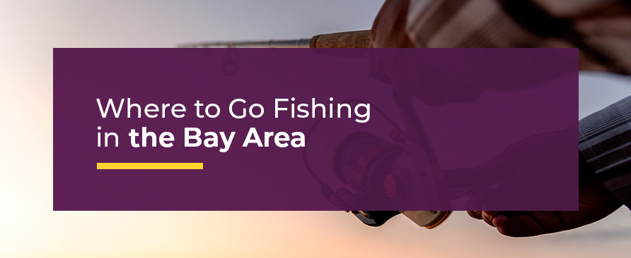 where to go fishing in the bay area