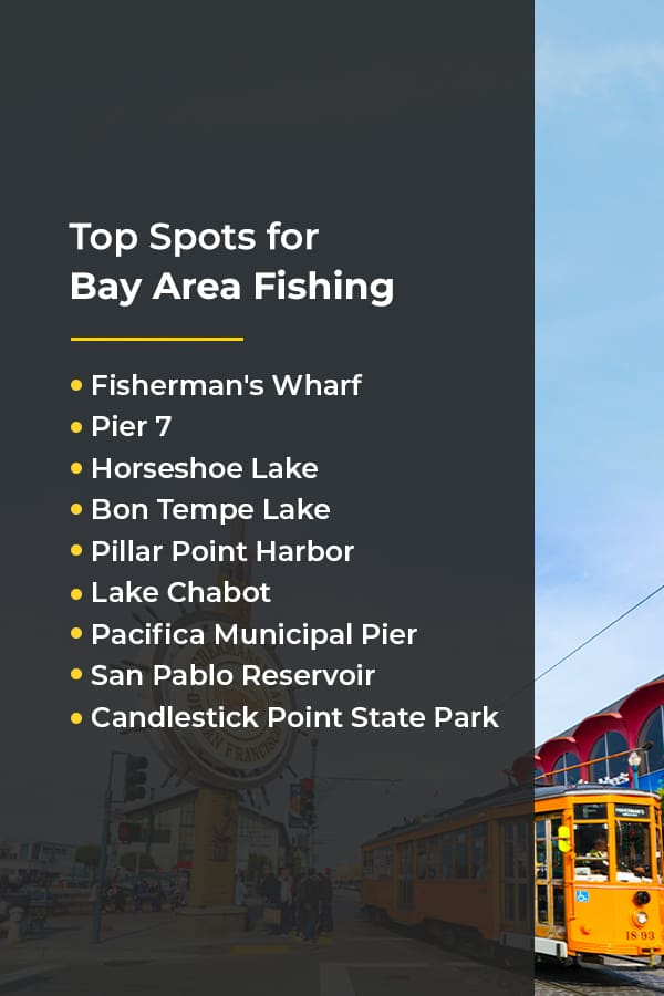 top spots for bay area fishing